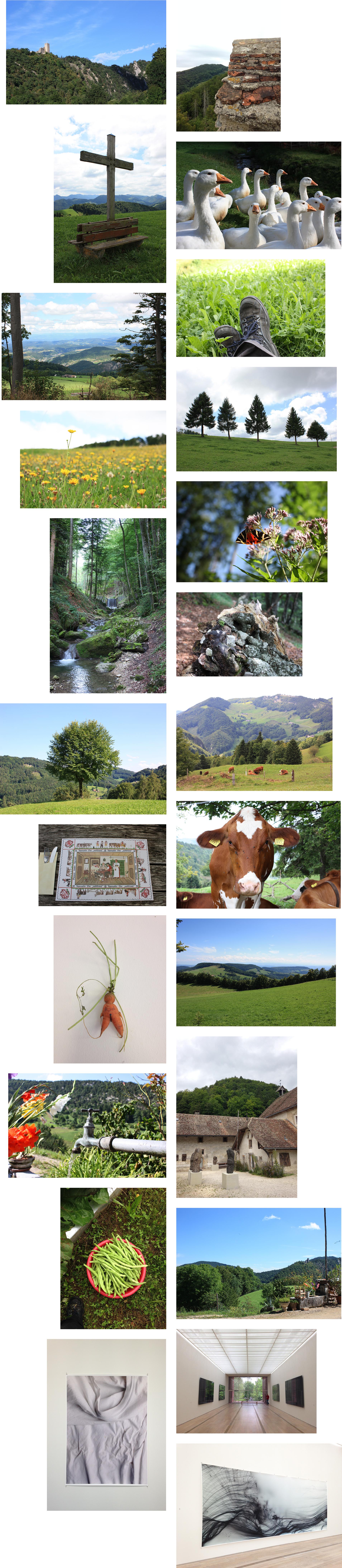 Collage_Schweiz_SarahJohann